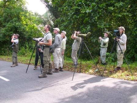 Birding on Lame Forest