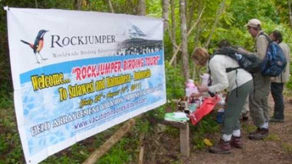 The Rockjumper Birding Tours On Sulawesi and Halmahera