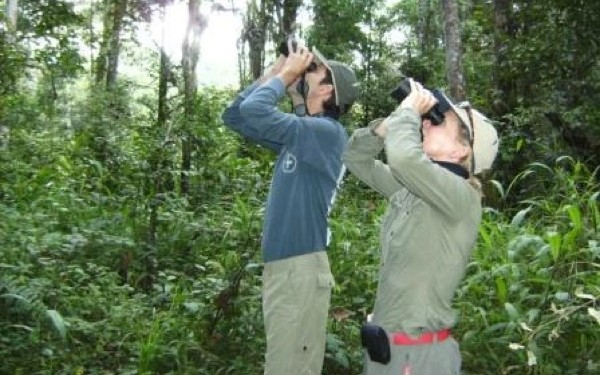 Birding in Sulawesi October 2009