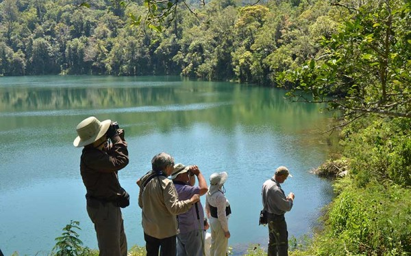 Peter Roberts Group on West Bali, Lesser Sundas Birding Tours