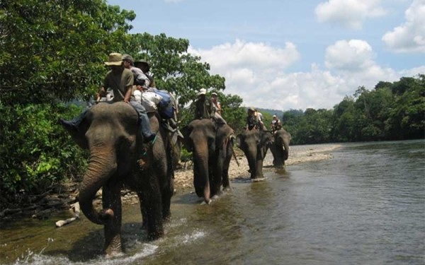 Sumatera Holiday Adventure, include Elephant Riding (14 Days / 13 Nights)