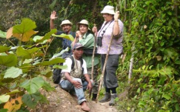 Lore Lindu National Park, Togean Islands, Peleng Islands Birding Tours (12 Days / 11 Nights)