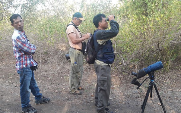 birdwatching-and-cultures-tours-on-bali-island-and-baluran-np-eastern-of-java-7-days-6-nights-04