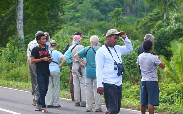 birdwatching-tours-on-halmahera-island-incl-gunung-uni-uni-foli-kali-batu-putih-tobelo-and-galela-6-days-5-nights-01