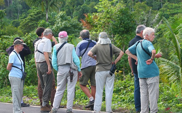 birdwatching-tours-on-halmahera-island-incl-gunung-uni-uni-foli-kali-batu-putih-tobelo-and-galela-6-days-5-nights-03