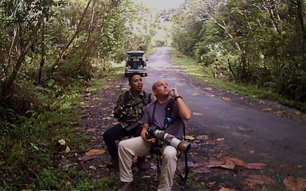 north-sumatera-and-aceh-birding-photography-tours-09