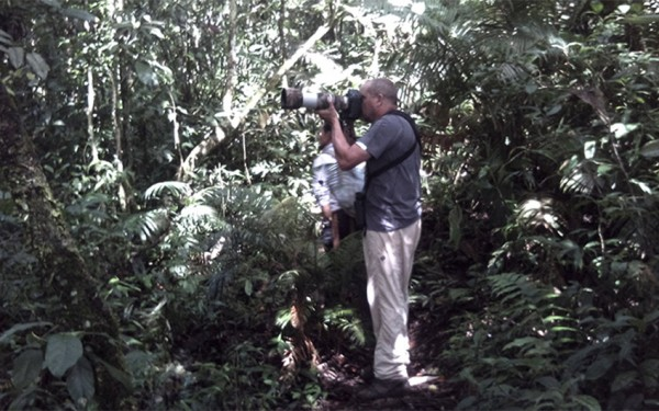 north-sumatera-and-aceh-birding-photography-tours-10