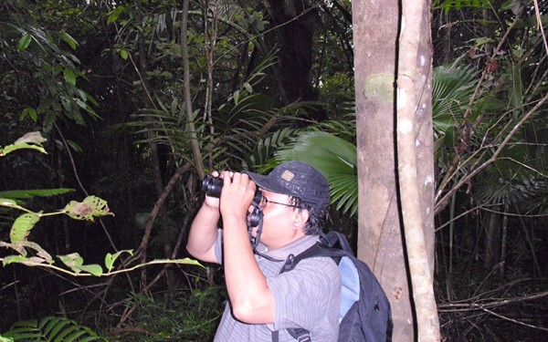 sorong-and-waigeo-island-birding-tours-9-days-8-nights-02