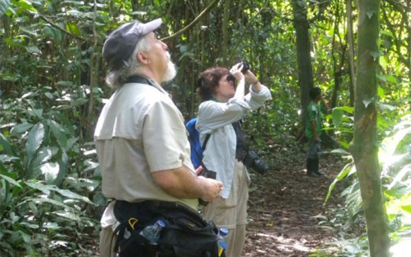 sorong-and-waigeo-island-birding-tours-9-days-8-nights-04