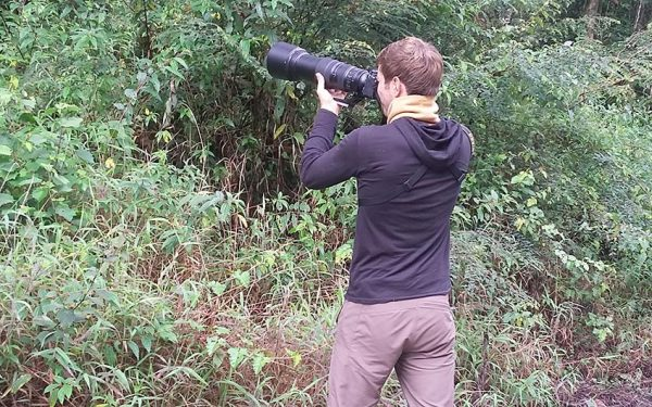 Birdwatching Tours in Sulawesi included Lore Lindu National Park and Tangkoko Nature Reserve