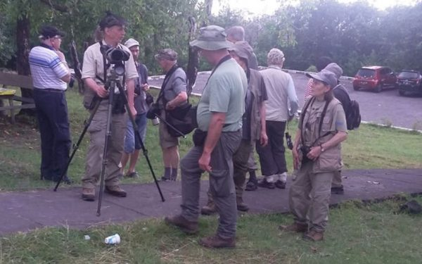 Birding-Tours-on-Sulawesi-Halmahera-and-West-Java-Birding-Tours-03