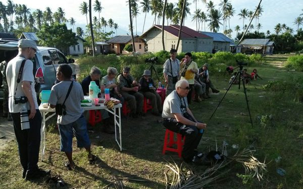 Birding-Tours-on-Sulawesi-Halmahera-and-West-Java-Birding-Tours-06
