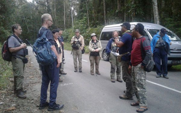 Birding-Tours-on-Sulawesi-Halmahera-and-West-Java-Birding-Tours-10
