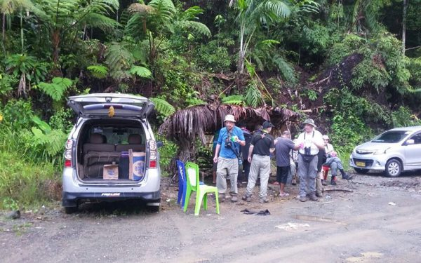 Birding-Tours-on-Sulawesi-Halmahera-and-West-Java-Birding-Tours-12