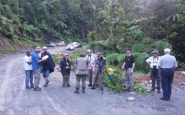Birding-Tours-on-Sulawesi-Halmahera-and-West-Java-Birding-Tours-14
