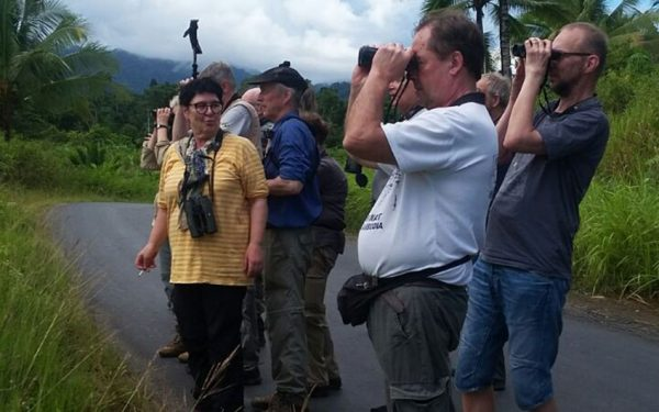 Birding-Tours-on-Sulawesi-Halmahera-and-West-Java-Birding-Tours-27