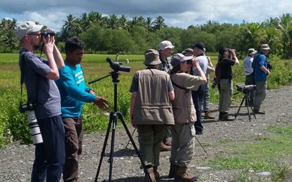 Birding-Tours-on-Sulawesi-Halmahera-and-West-Java-Birding-Tours-38