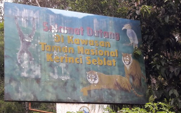 Kerinci Seblat National Park included Tapan Road & Way Kambas Birding Tours (11 Days / 10 Nights)