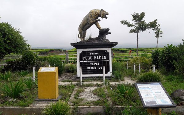 Tiger-Monument-on-Kerinci-National-park