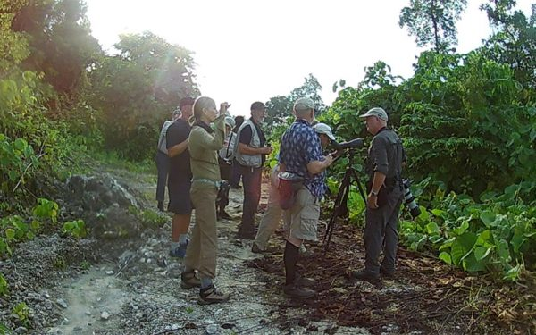 birding-tours-to-sulawesi-molucass-and-west-papua-01