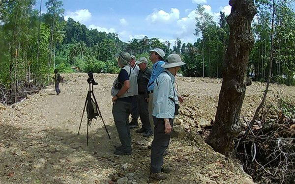 birding-tours-to-sulawesi-molucass-and-west-papua-03