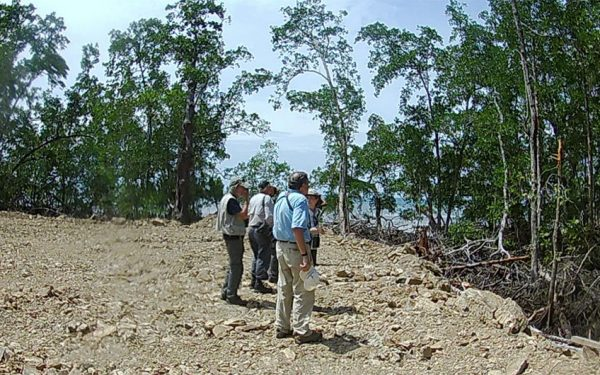 birding-tours-to-sulawesi-molucass-and-west-papua-05