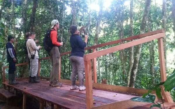 sulawesi-and-halmahera-birding-tours-included-rammang-rammang-river-and-karaenta-forest-in-the-makassar-area-05