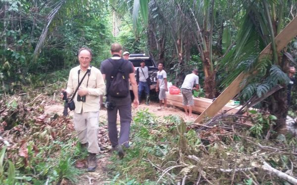 sulawesi-and-halmahera-birding-tours-included-rammang-rammang-river-and-karaenta-forest-in-the-makassar-area-10