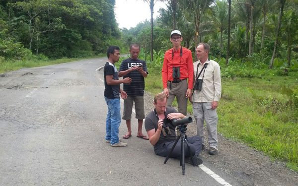 sulawesi-and-halmahera-birding-tours-included-rammang-rammang-river-and-karaenta-forest-in-the-makassar-area-14