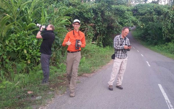 sulawesi-and-halmahera-birding-tours-included-rammang-rammang-river-and-karaenta-forest-in-the-makassar-area-20
