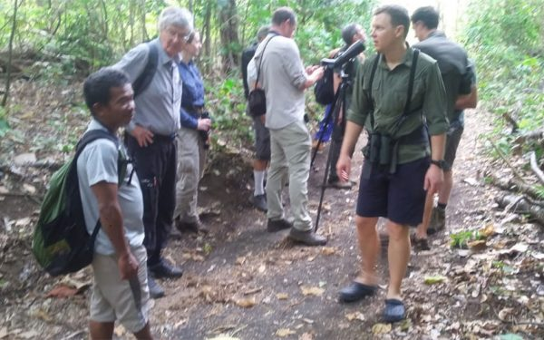 sulawesi-and-halmahera-birding-tours-the-group-succeed-on-seeing-geomalia-10