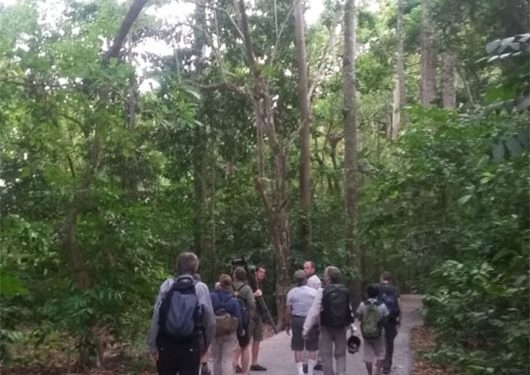 sulawesi-and-halmahera-birding-tours-the-group-succeed-on-seeing-geomalia-16