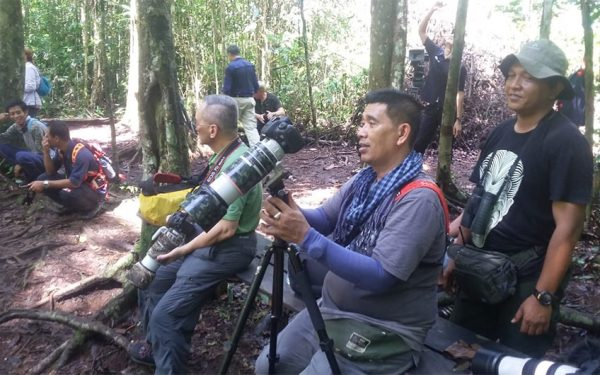 wildlife-photographic-and-filming-tours-to-kalimantan-07