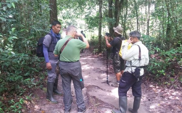 wildlife-photographic-and-filming-tours-to-kalimantan-08