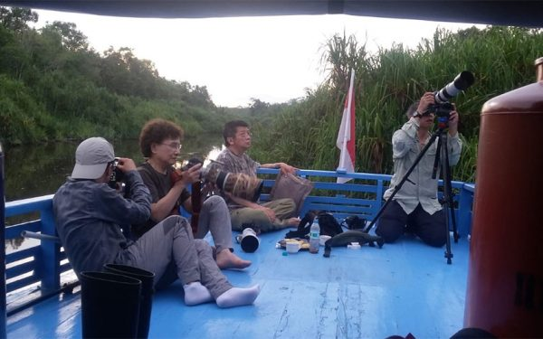 wildlife-photographic-and-filming-tours-to-kalimantan-11