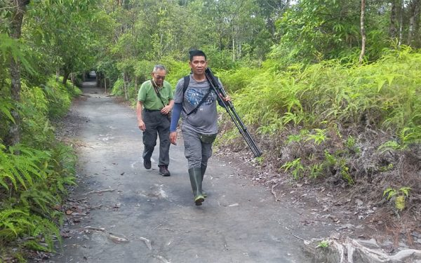 wildlife-photographic-and-filming-tours-to-kalimantan-23