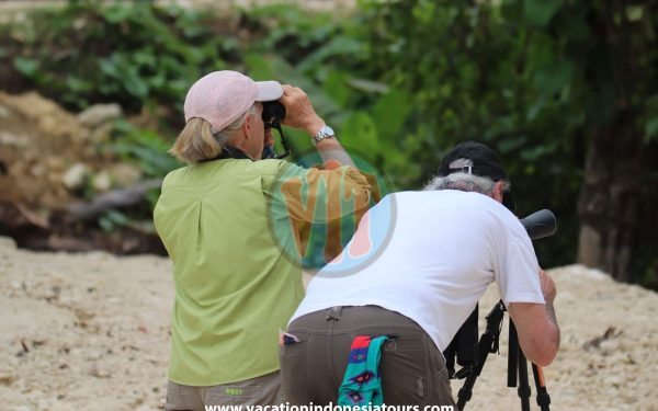 paige-harvey-and-bruce-harvey-to-west-papua-for-birding-tours-to-waigeo-island-and-arfak-mountain-on-manokwari-20