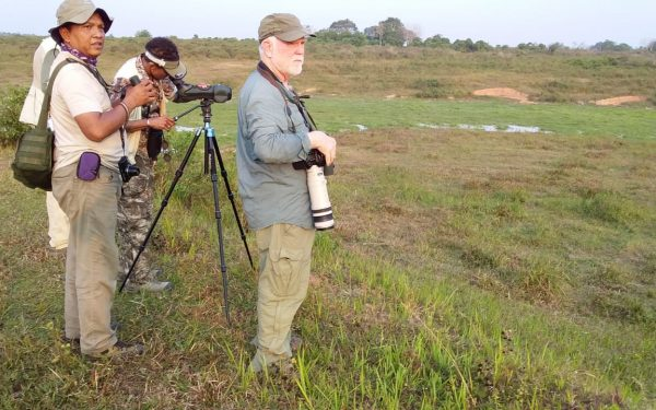 peter-roberts-birding-tours-to-gunung-gede-on-west-java-and-kerinci-seblat-national-park-includeded-tapan-road-on-jambi-and-the-waykambas-np-on-lampung-10