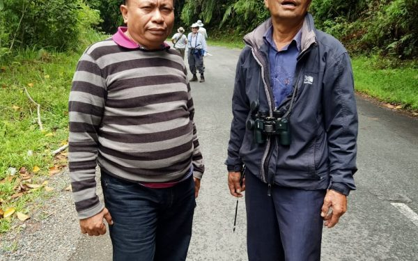 peter-roberts-birding-tours-to-gunung-gede-on-west-java-and-kerinci-seblat-national-park-includeded-tapan-road-on-jambi-and-the-waykambas-np-on-lampung-18