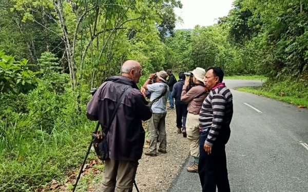 peter-roberts-birding-tours-to-gunung-gede-on-west-java-and-kerinci-seblat-national-park-includeded-tapan-road-on-jambi-and-the-waykambas-np-on-lampung-19