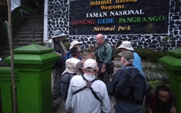peter-roberts-birding-tours-to-gunung-gede-on-west-java-and-kerinci-seblat-national-park-includeded-tapan-road-on-jambi-and-the-waykambas-np-on-lampung-26