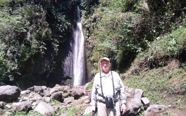 peter-roberts-birding-tours-to-gunung-gede-on-west-java-and-kerinci-seblat-national-park-includeded-tapan-road-on-jambi-and-the-waykambas-np-on-lampung-30