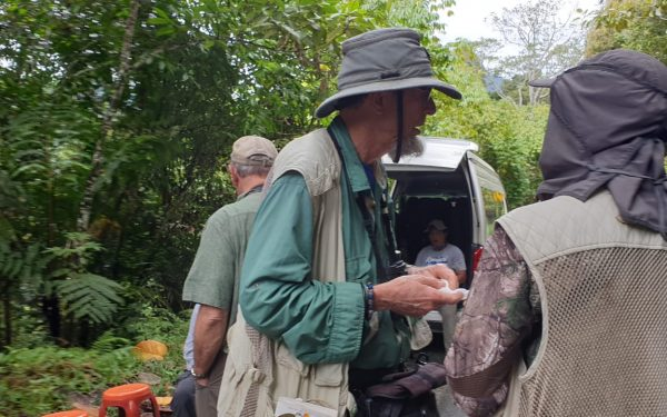 peter-roberts-birding-tours-to-gunung-gede-on-west-java-and-kerinci-seblat-national-park-includeded-tapan-road-on-jambi-and-the-waykambas-np-on-lampung-40