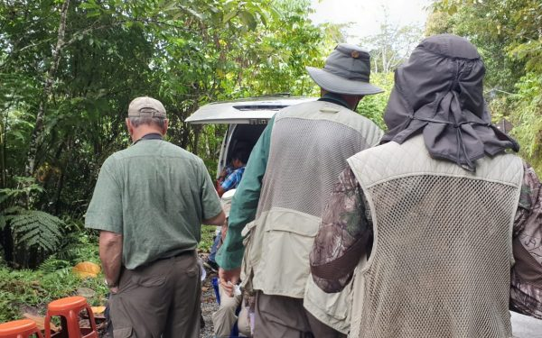 peter-roberts-birding-tours-to-gunung-gede-on-west-java-and-kerinci-seblat-national-park-includeded-tapan-road-on-jambi-and-the-waykambas-np-on-lampung-41