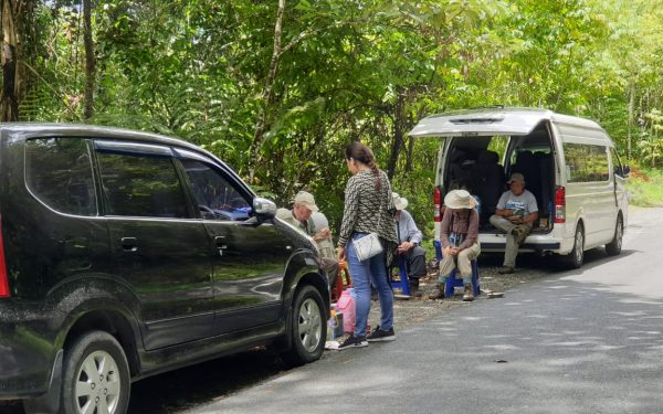 peter-roberts-birding-tours-to-gunung-gede-on-west-java-and-kerinci-seblat-national-park-includeded-tapan-road-on-jambi-and-the-waykambas-np-on-lampung-44