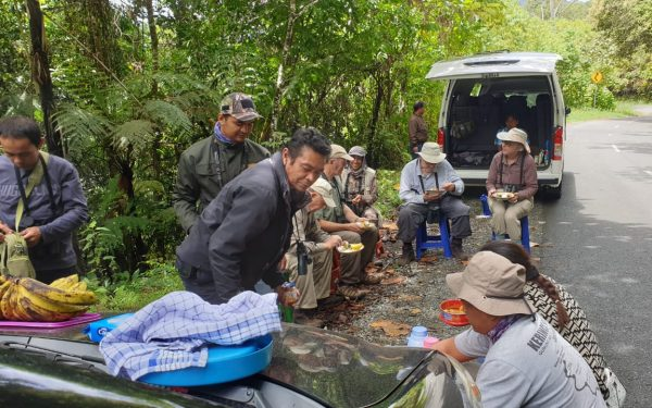 peter-roberts-birding-tours-to-gunung-gede-on-west-java-and-kerinci-seblat-national-park-includeded-tapan-road-on-jambi-and-the-waykambas-np-on-lampung-47
