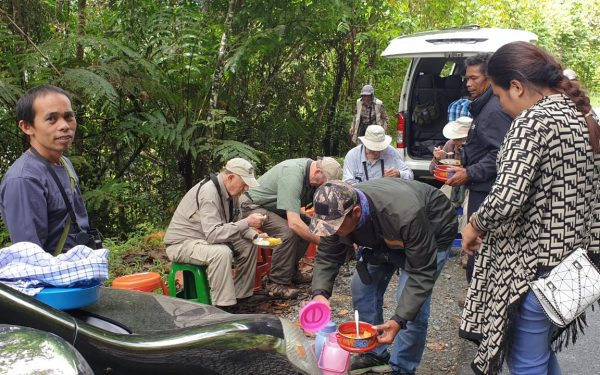peter-roberts-birding-tours-to-gunung-gede-on-west-java-and-kerinci-seblat-national-park-includeded-tapan-road-on-jambi-and-the-waykambas-np-on-lampung-50