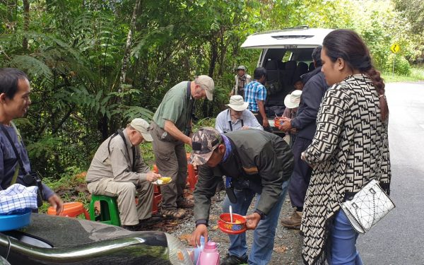 peter-roberts-birding-tours-to-gunung-gede-on-west-java-and-kerinci-seblat-national-park-includeded-tapan-road-on-jambi-and-the-waykambas-np-on-lampung-52