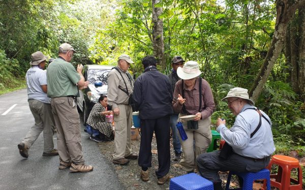 peter-roberts-birding-tours-to-gunung-gede-on-west-java-and-kerinci-seblat-national-park-includeded-tapan-road-on-jambi-and-the-waykambas-np-on-lampung-55