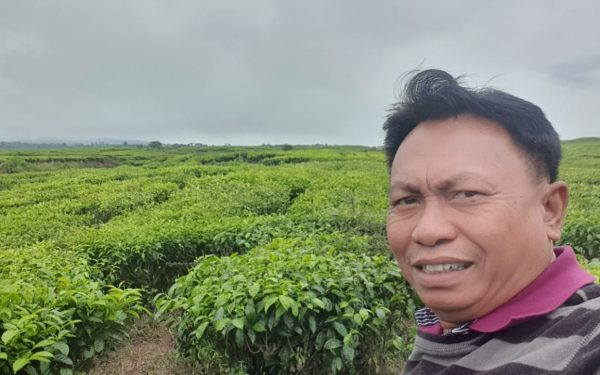 peter-roberts-birding-tours-to-gunung-gede-on-west-java-and-kerinci-seblat-national-park-includeded-tapan-road-on-jambi-and-the-waykambas-np-on-lampung-64
